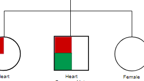 Genograms example: Genogram with Health Issue