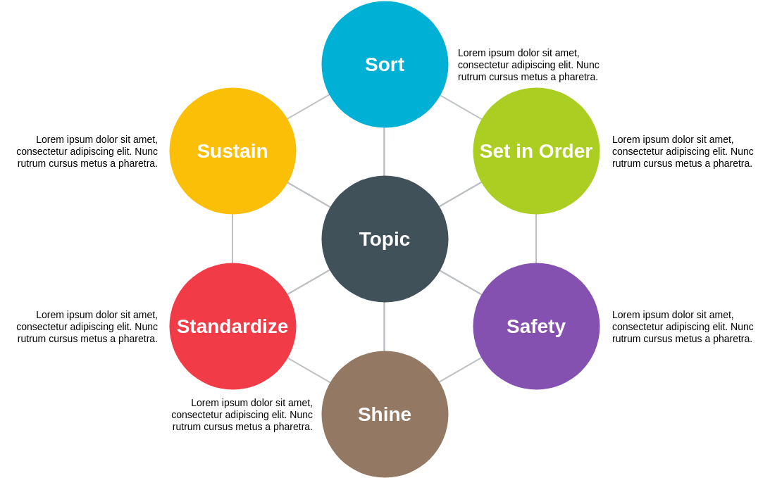 Six Sigma 6S Diagram Template (6S Example)
