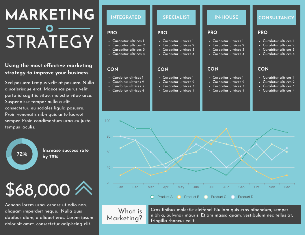 Infographic template: Marketing strategy horizontal Infographic (Created by InfoART's Infographic maker)