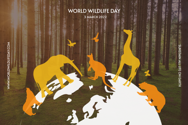 Greeting Card template: Animals Silhouettes World Wildlife Day Greeting Card (Created by InfoART's Greeting Card maker)
