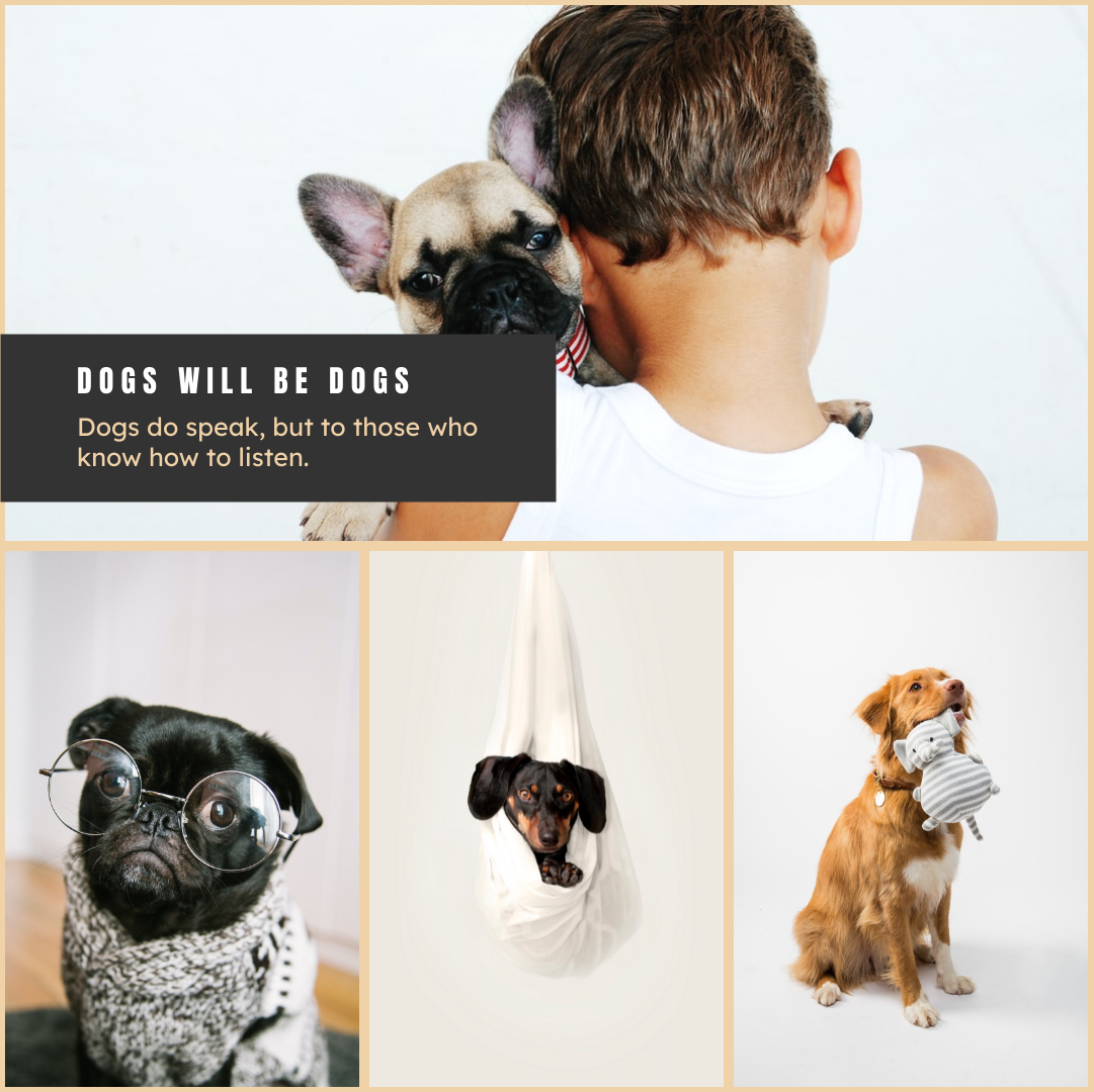 Photo Collage template: Dog Will Be Dogs Photo Collage (Created by Collage's Photo Collage maker)