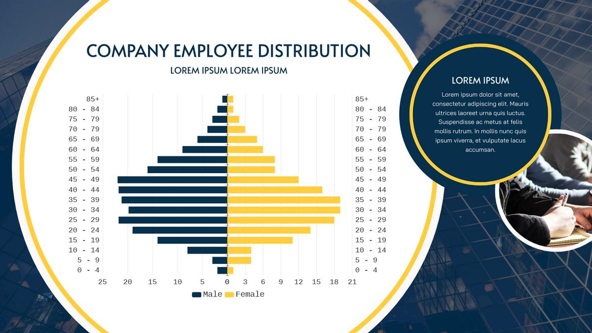 Butterfly Chart template: Company Employee Distribution Butterfly Chart (Created by Chart's Butterfly Chart maker)