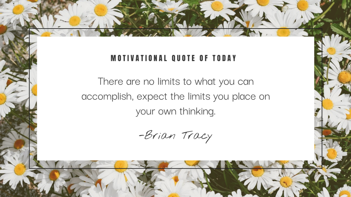 Twitter Post template: Daisy Photo Motivational Quote Twitter Post (Created by InfoART's Twitter Post maker)