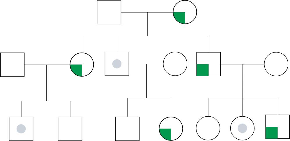 Genogram template: Genogram With Inheritance of Diabetes (Created by Diagrams's Genogram maker)