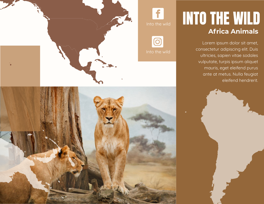 Brochure template: Africa Wildlife Brochure (Created by InfoART's Brochure maker)