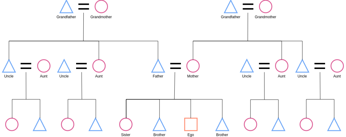 Family Kinship Figure (Kinship Diagram Example)
