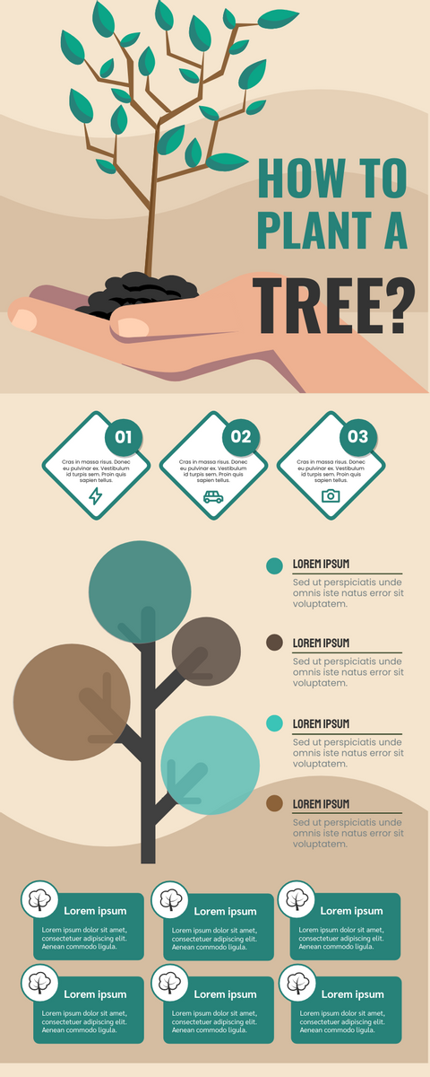Infographic template: How To Plant A Tree Infographic (Created by InfoART's Infographic maker)