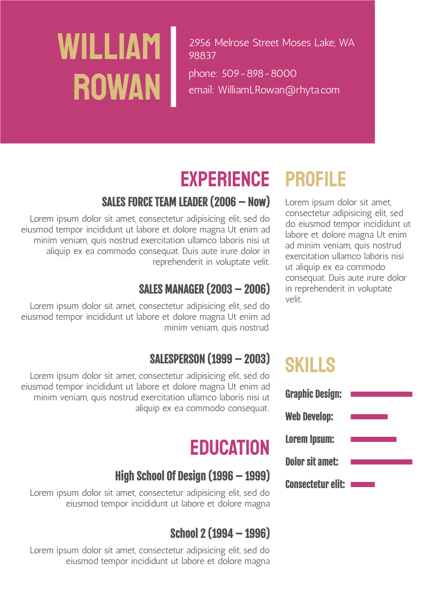 Resume template: Modern Resume 2 (Created by InfoART's Resume maker)
