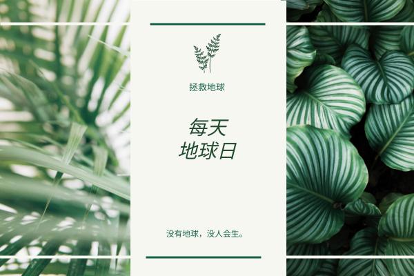 贺卡 template: 绿色和白色的植物照片地球日贺卡 (Created by InfoART's 贺卡 maker)