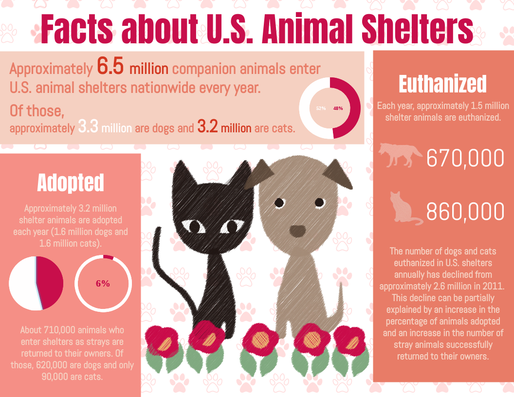 Infographic template: Facts about U.S. Animal Shelters infographic (Created by InfoART's Infographic maker)