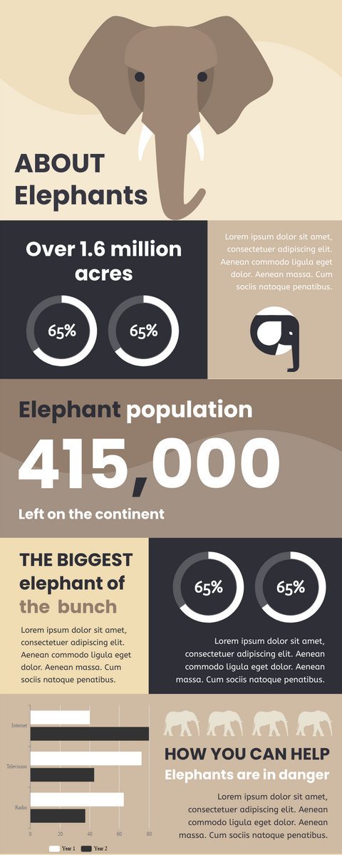 Infographic template: Infographic About Elephants (Created by InfoART's Infographic maker)