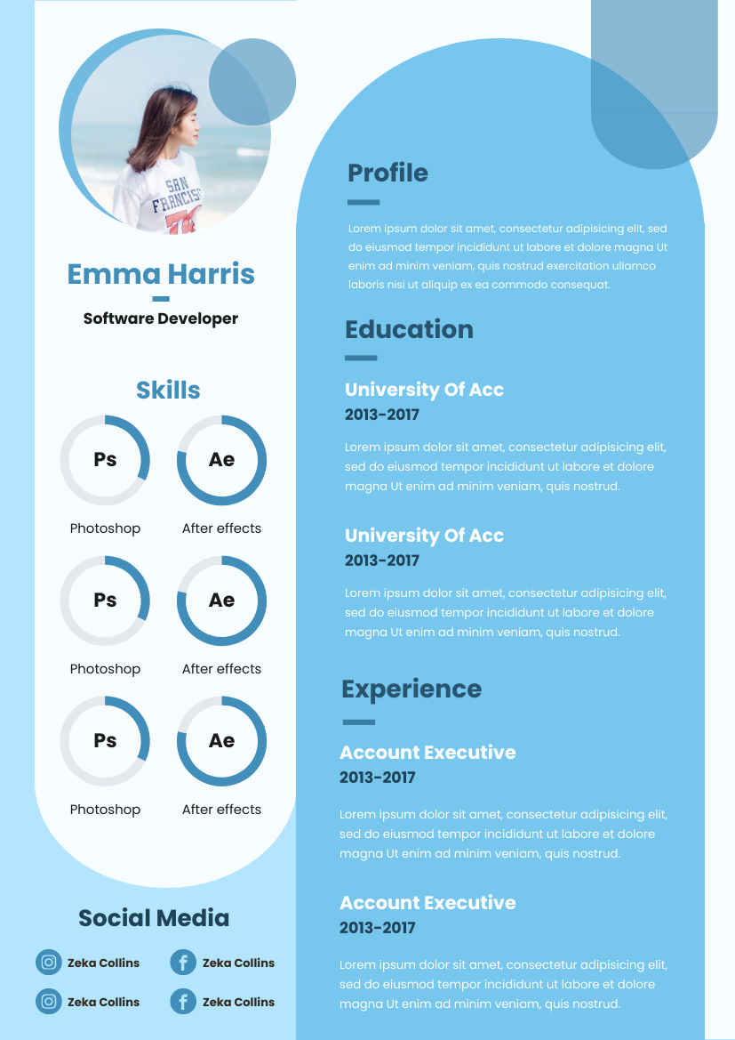 Resume template: Blue Curve Resume (Created by InfoART's Resume maker)