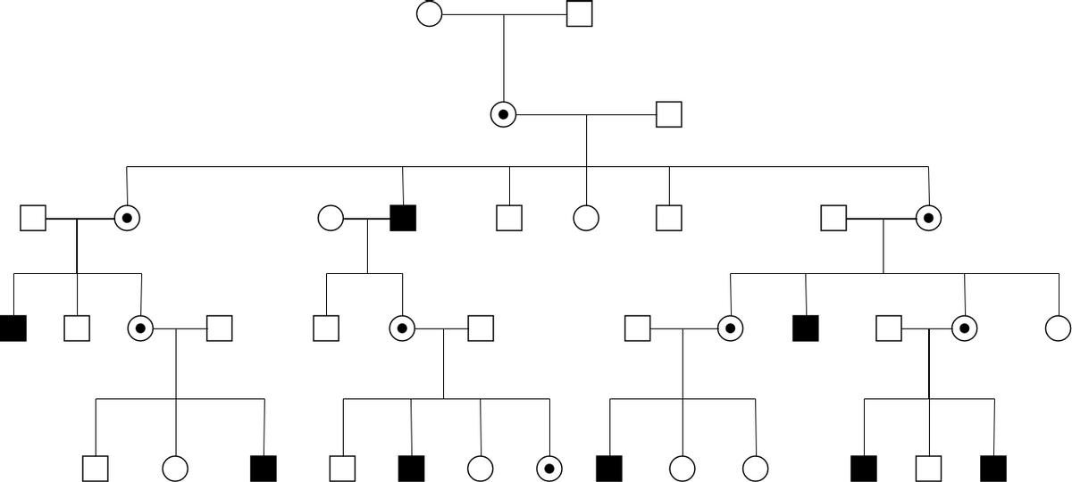 Pedigree Chart template: Linked Recessive Pedigree Chart (Created by Diagrams's Pedigree Chart maker)