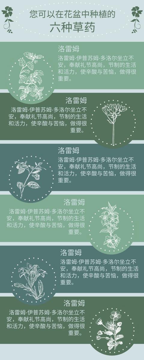 信息图表 template: 草药信息图 (Created by InfoART's 信息图表 maker)