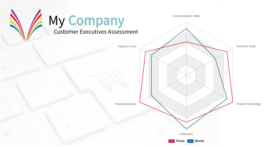 Customer Executives Assessment (Radar Chart Example)