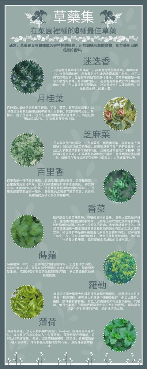 信息圖表 template: 百草集信息圖 (Created by InfoART's 信息圖表 maker)