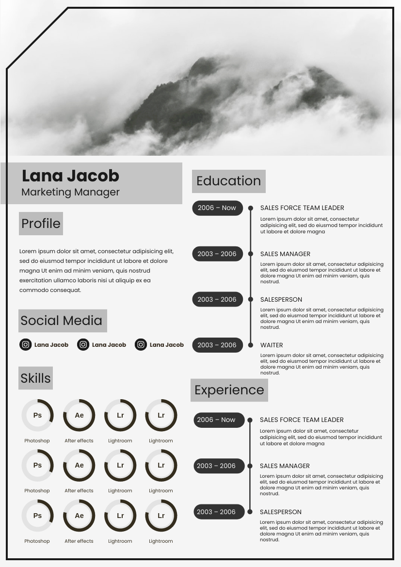 Resume template: B And W Resume (Created by InfoART's Resume maker)
