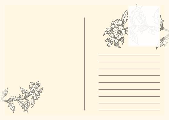 Postcard template:  Japan Cherry Blossoms Postcard (Created by InfoART's Postcard maker)