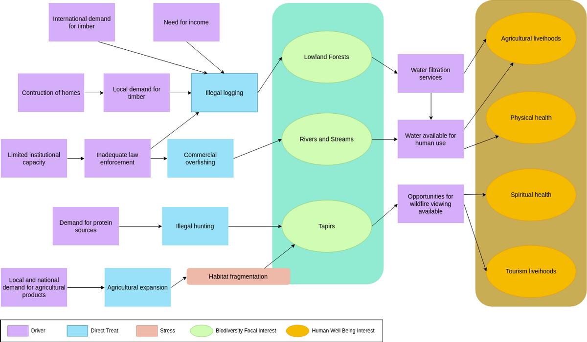 Problem Flow Diagram template: Tropical Forest Problem Flow Diagram (Created by Diagrams's Problem Flow Diagram maker)