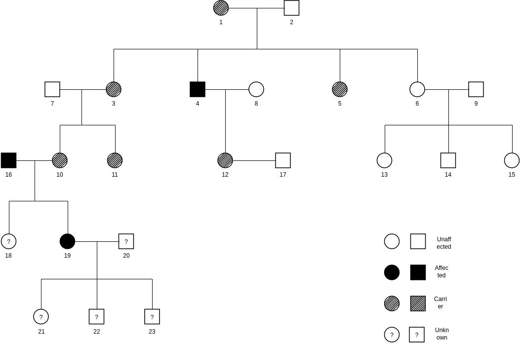 Pedigree Chart template: Pedigree Chart Sample (Created by Diagrams's Pedigree Chart maker)