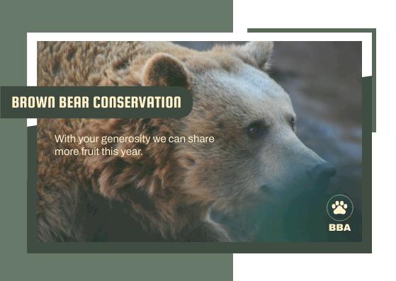 Postcard template: Black Bear Conservation Postcard (Created by InfoART's Postcard maker)