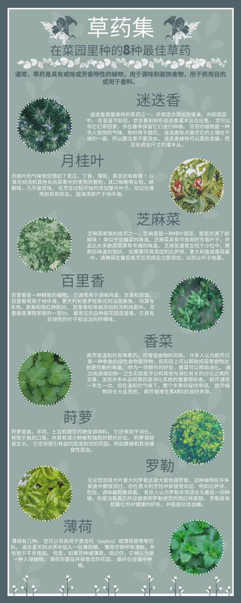 信息图表 template: 百草集信息图 (Created by InfoART's 信息图表 maker)