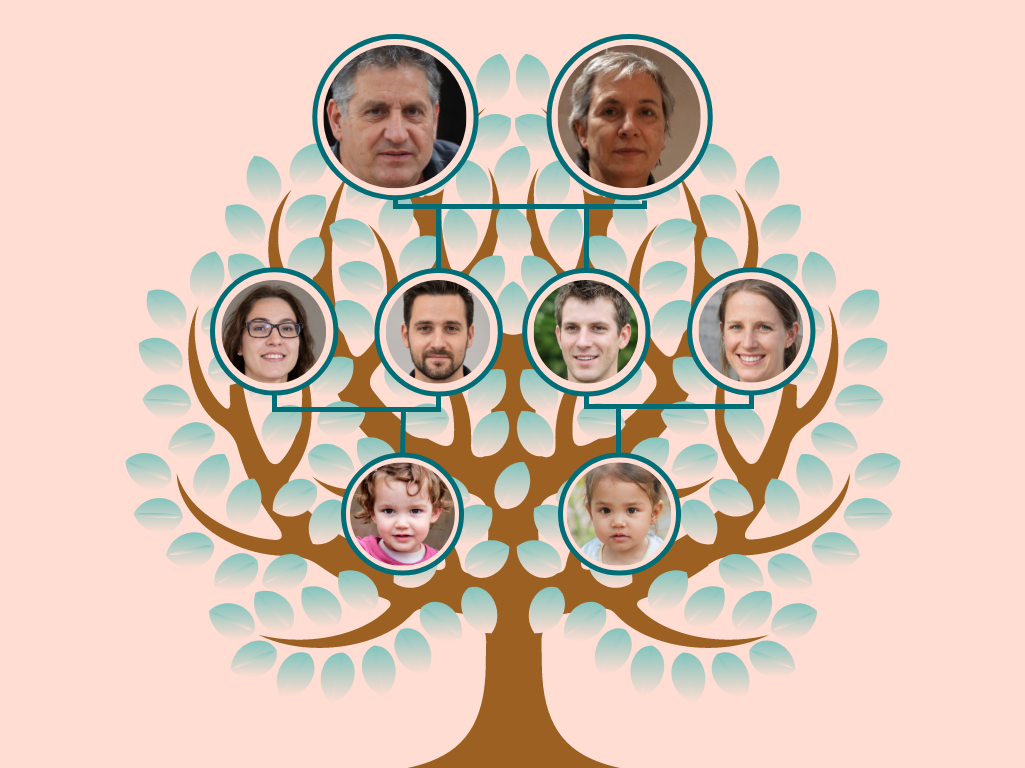 Family Tree template: Pink Round Family Tree with Background (Created by Collage's Family Tree maker)