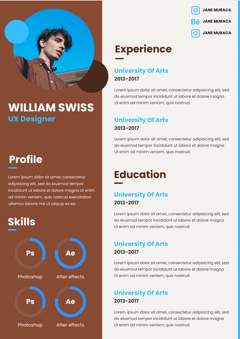 Resume template: Blue With Brown Resume (Created by InfoART's Resume maker)
