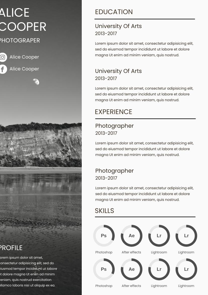 Resume template: Mountain Scene Resume (Created by InfoART's Resume maker)