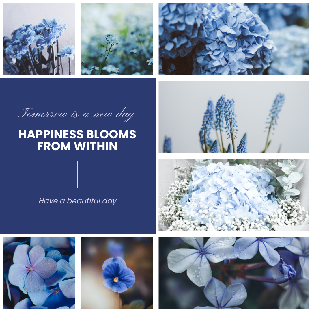 Photo Collage template: Wildflowers Blooming Photo Collage (Created by Collage's Photo Collage maker)