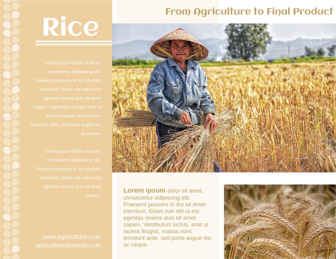 Brochure template: Rice Brochure (Created by InfoART's Brochure marker)