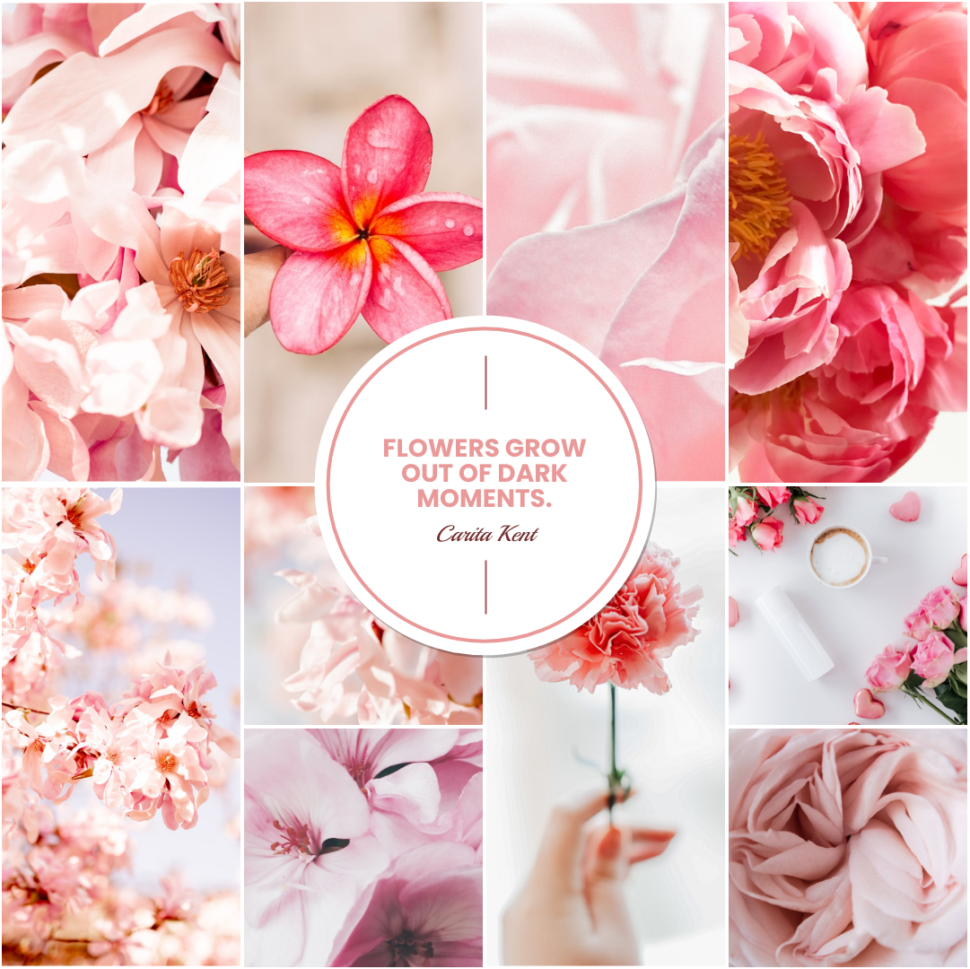Photo Collage template: Pink Flowers Blooms Photo Collage (Created by Collage's Photo Collage maker)