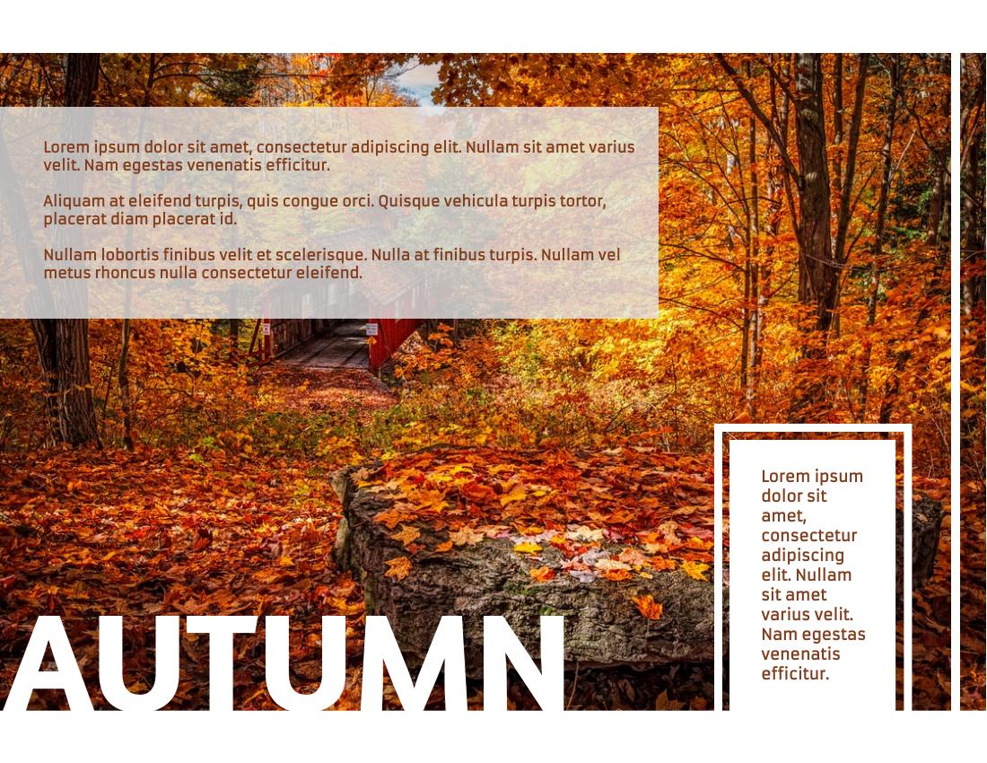 Brochure template: Autumn Tour Brochure (Created by InfoART's Brochure marker)
