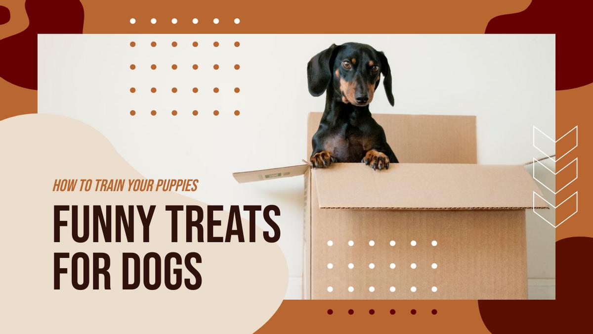 YouTube Thumbnail template: Funny Treats For Dogs YouTube Thumbnail (Created by InfoART's YouTube Thumbnail maker)