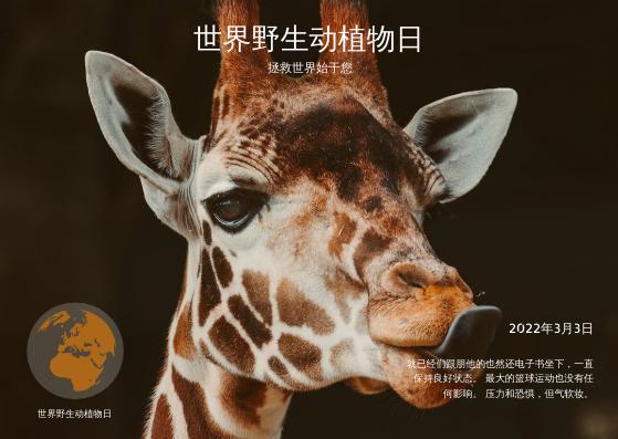 明信片 template: 棕色长颈鹿照片世界野生动物日明信片 (Created by InfoART's 明信片 maker)