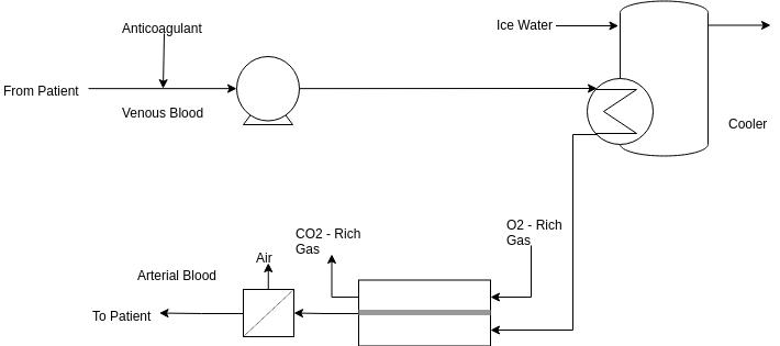 Process Flow Diagram template: Biomedical Engineering (Created by Diagrams's Process Flow Diagram maker)