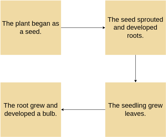 Flow Map template: Plant Growth Example (Created by Diagrams's Flow Map maker)