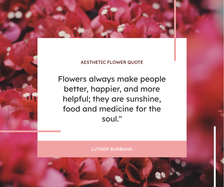 Facebook Post template: Floral Background Aesthetic Quote Facebook Post (Created by InfoART's Facebook Post maker)