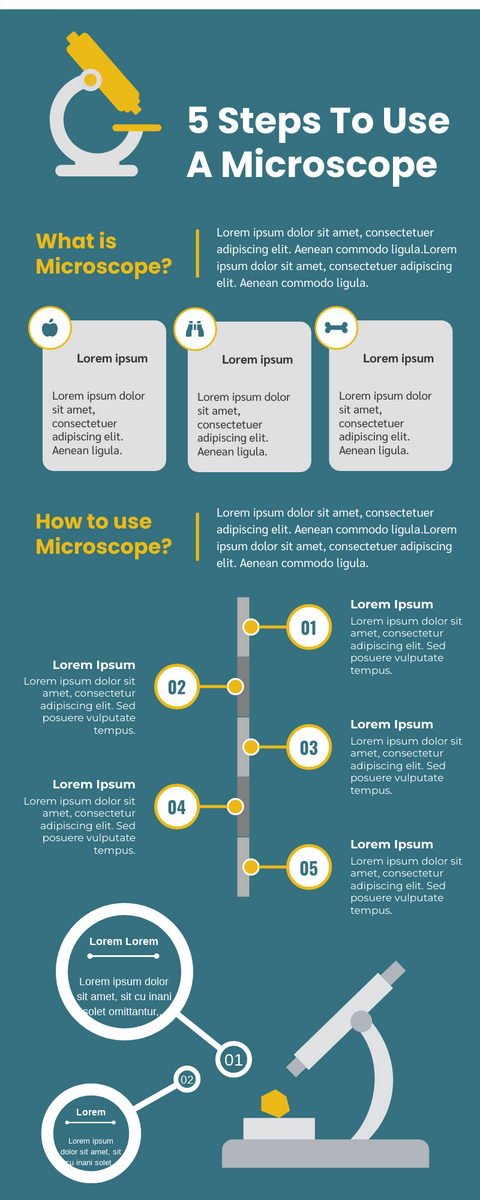 Infographic template: 5 Steps To Use A Microscope Infographic (Created by InfoART's Infographic maker)