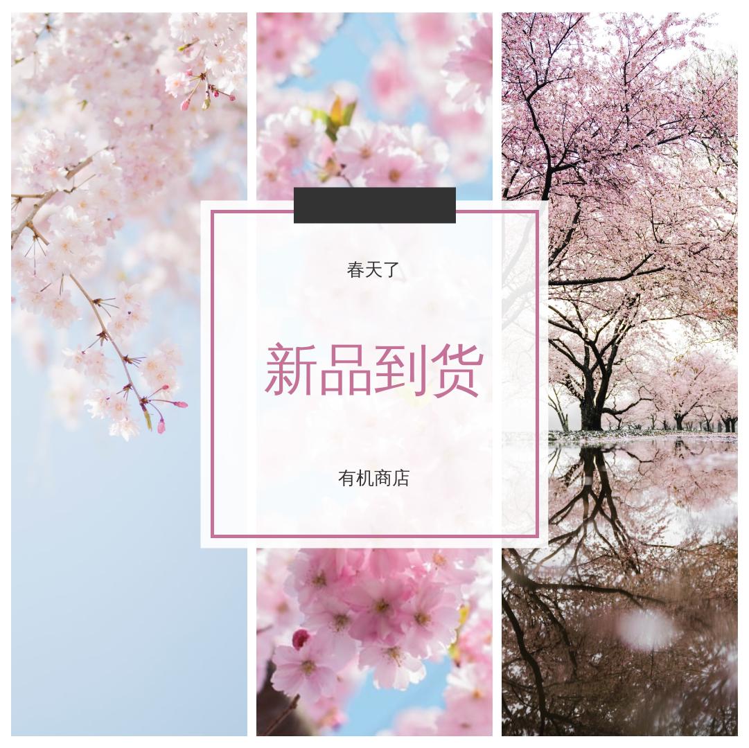 Instagram 帖子 template: 樱花新品上市Instagram帖子 (Created by InfoART's Instagram 帖子 maker)