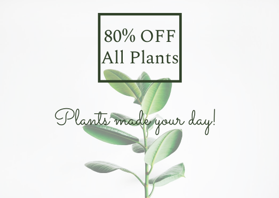 Gift Card template: Plant Gift Card (Created by InfoART's Gift Card maker)