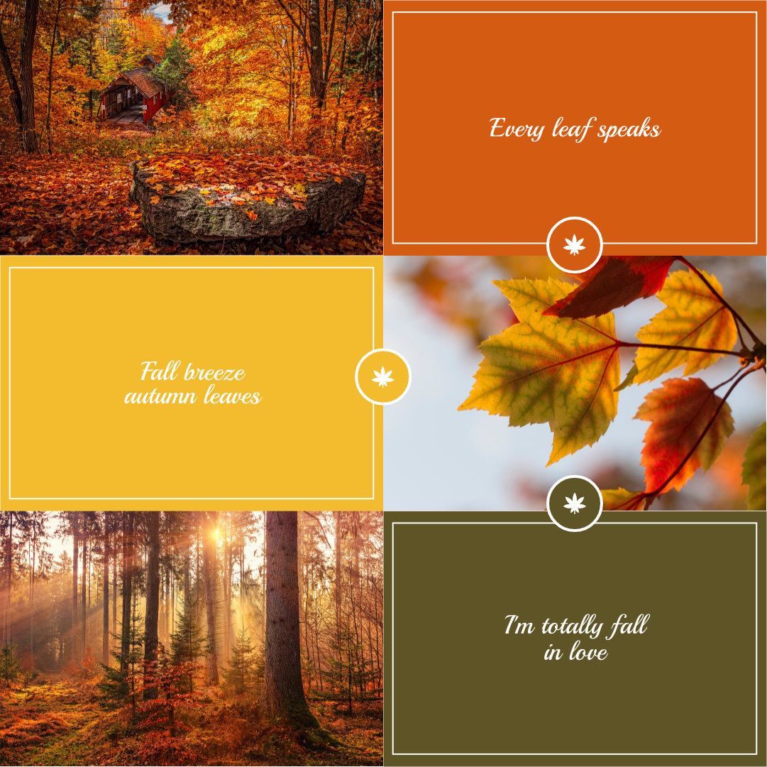 Instagram Post template: Autumn Leaves Aesthetics Instagram Post (Created by Collage's Instagram Post maker)