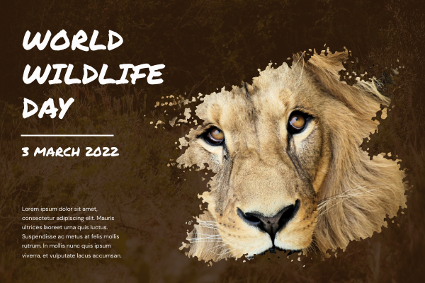 Greeting Card template: Lion Photo Brush World Wildlife Day Greeting Card (Created by InfoART's Greeting Card maker)