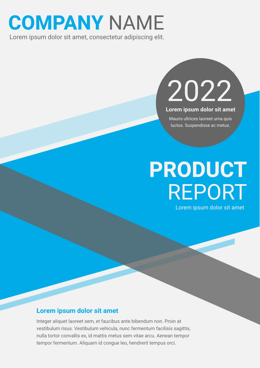 Poster template: Product Report (Created by InfoART's Poster marker)