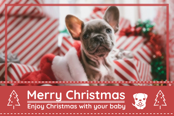Greeting Card template: Merry Christmas With Pet Greeting Card (Created by InfoART's Greeting Card maker)