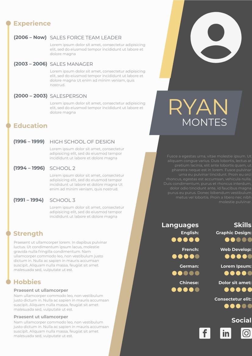 Resume template: Modern Resume (Created by InfoART's Resume maker)