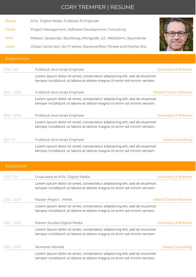 Resume template: Orange Resume 1 (Created by InfoART's Resume maker)