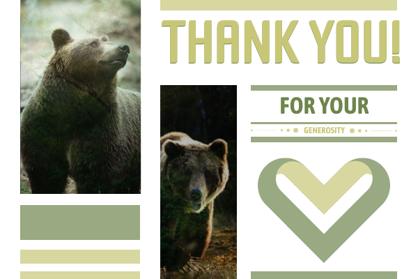 Greeting Card template: Donation Thank You Card (Created by InfoART's Greeting Card maker)