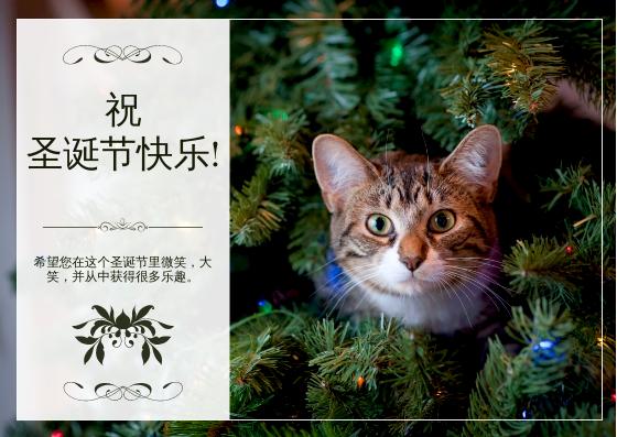 明信片 template: 绿猫照片圣诞节庆祝活动明信片 (Created by InfoART's 明信片 maker)
