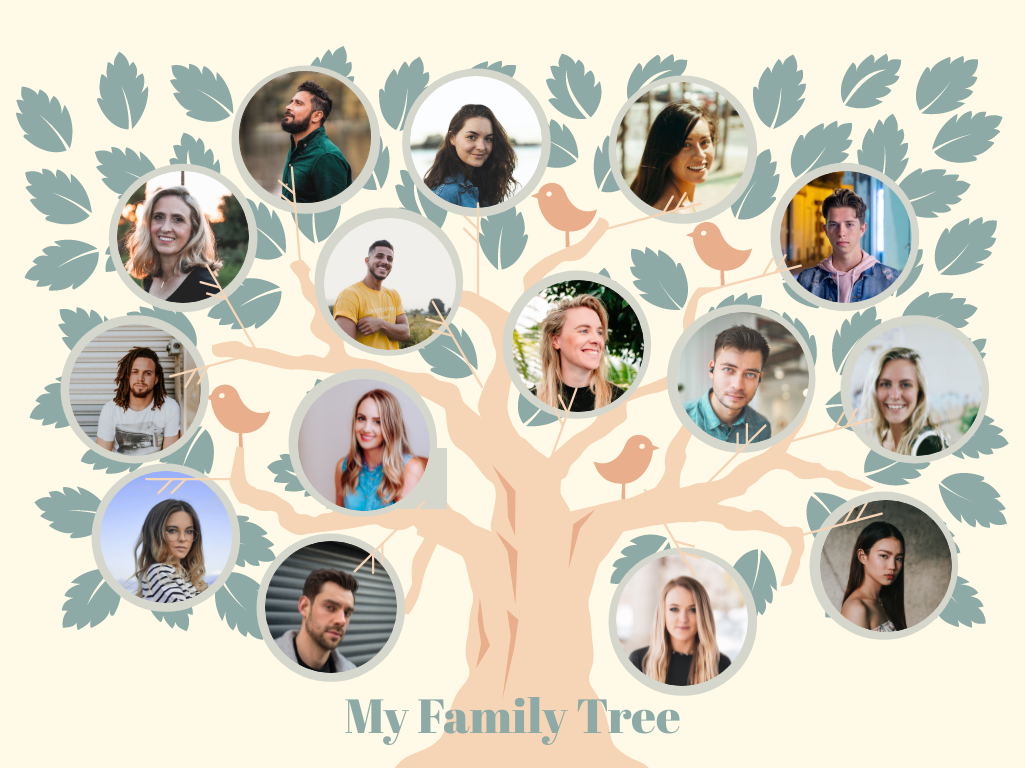 Family Tree template: Big Tree Family Tree (Created by Collage's Family Tree maker)